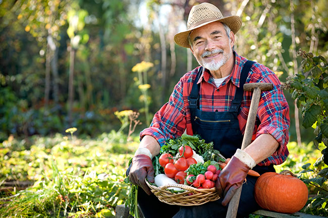 Green Marketing Strategies for Organic Farmer